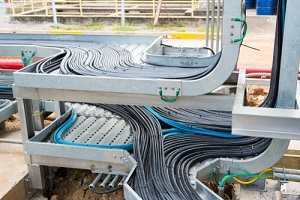 cables and instrument cables in the trays